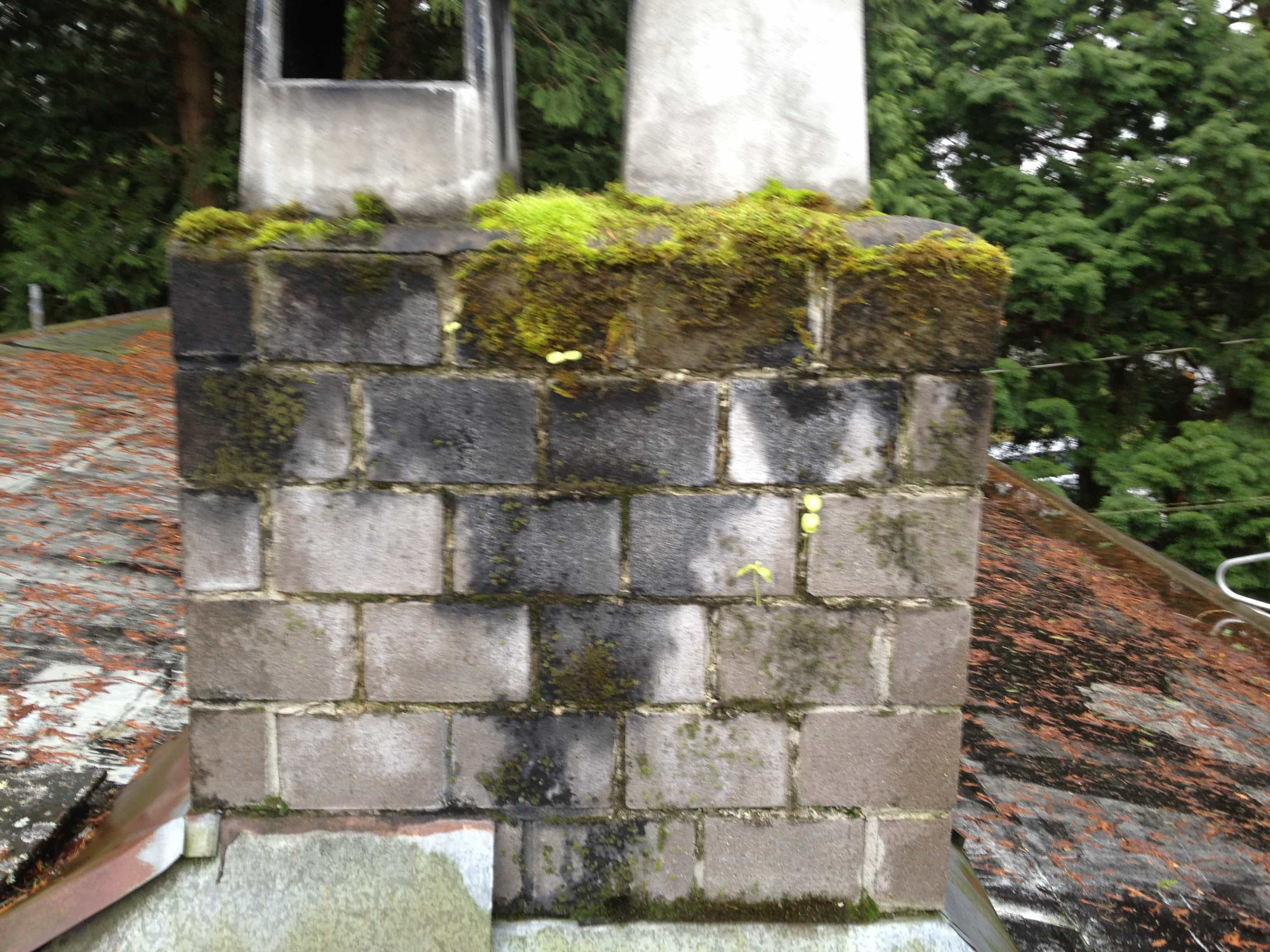 Chimney Repair Tsawwassen BC
